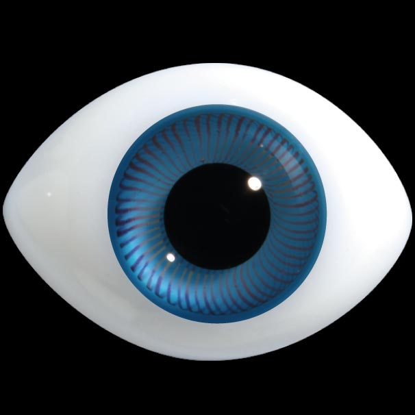 Regular Oval Glass Eyes