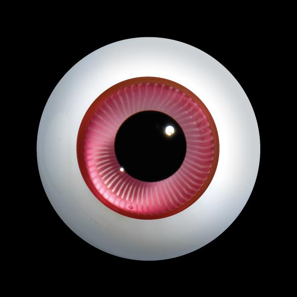 D24 玻璃眼睛平背