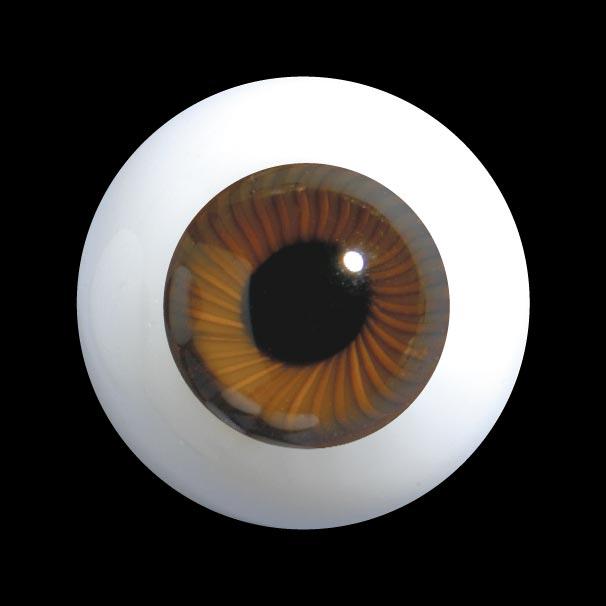 D31 玻璃眼睛平背