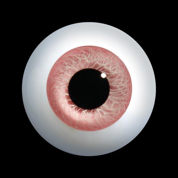 D400LL ローレンズラウンドガラス人形の目